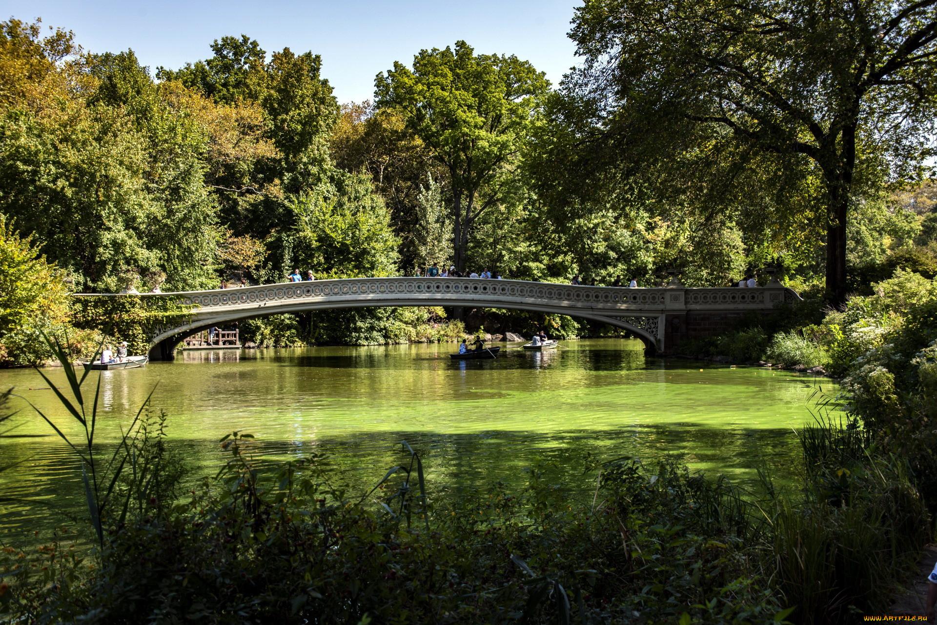 цветные фотографии красивых мостиков в парках является уникальным курортом